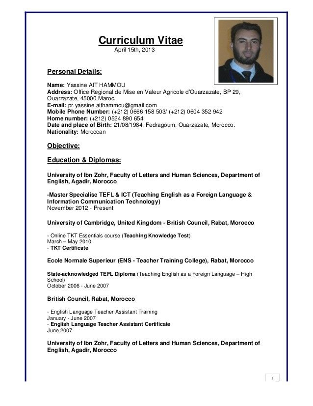 computer skills resume example best examples literate writing guild reviews palliative Resume Computer Literate Resume