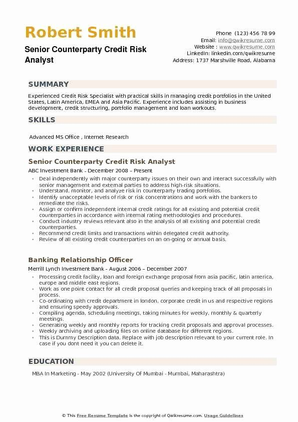 credit analyst resume example luxury market risk sample cv in examples good include Resume Risk Analyst Resume Sample