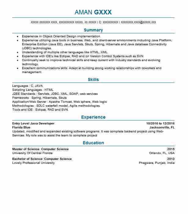 entry level developer resume example livecareer soap web services ministry templates for Resume Soap Web Services Developer Resume