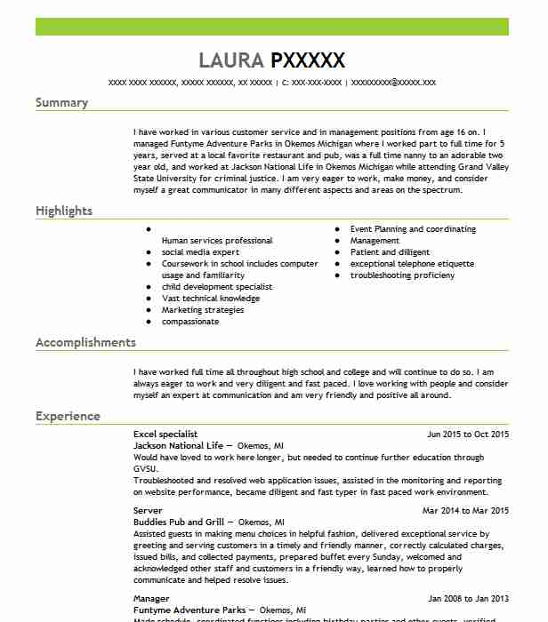 excel specialist resume example resumes livecareer sample experience free web developer Resume Sample Resume Excel Experience