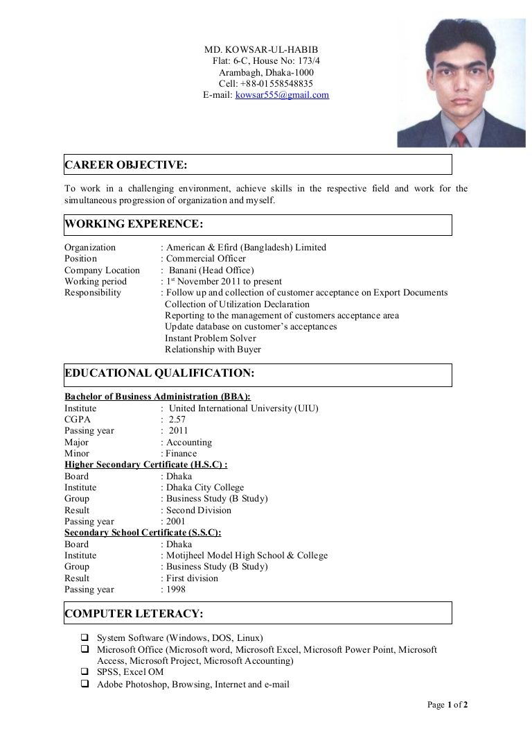 final cv with photo format for job in resume template standard create your own Resume Resume Template American Standard