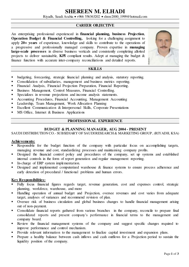 financial controller cv resume thumbnail text format for volunteer words experience Resume Financial Controller Resume