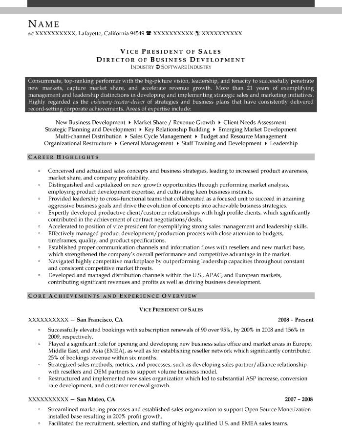 good resume examples for all careers prime vice president of business development Resume Vice President Of Business Development Resume