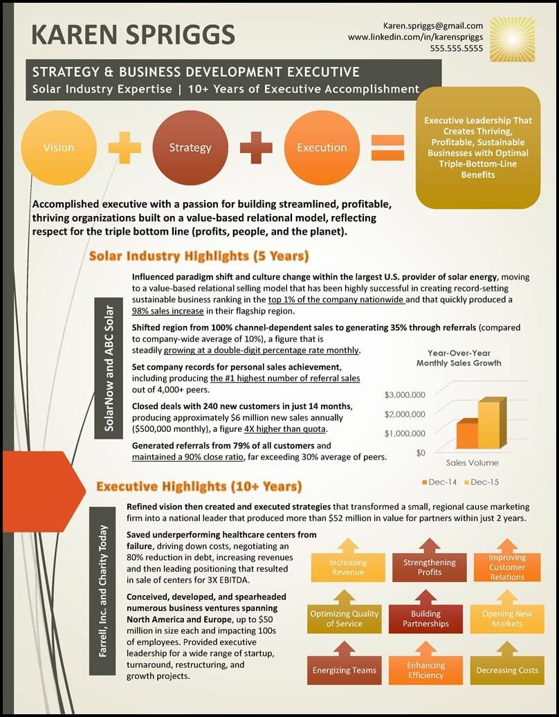 graphic resume value profile example infographic examples design creative based sample Resume Value Based Resume Examples