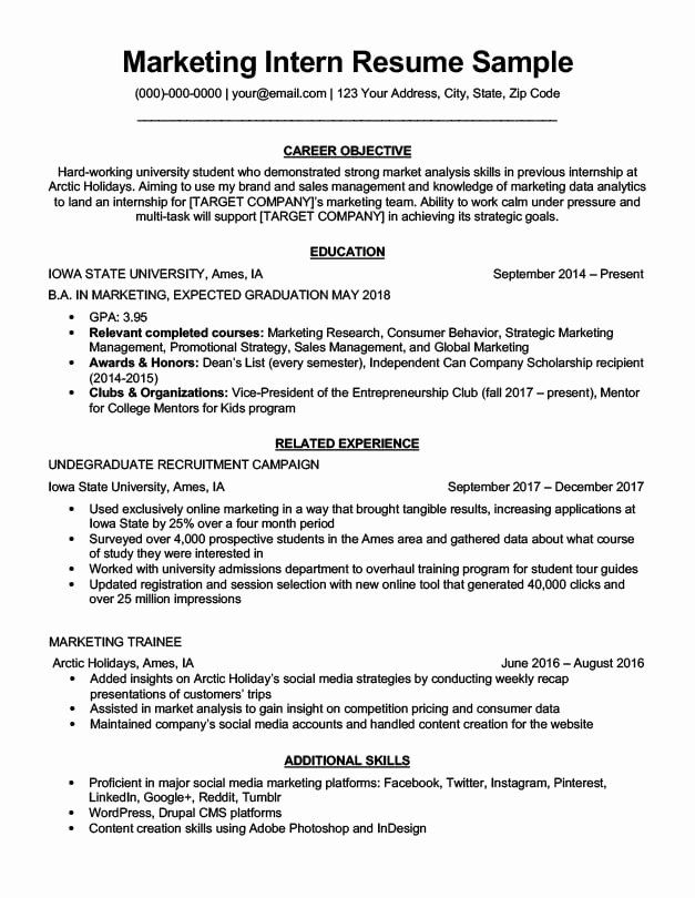 marketing resume objective examples new intern sample writing tips in internship targeted Resume Targeted Resume Objective Examples