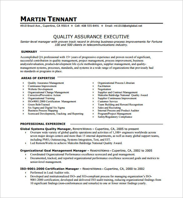 one resume template free word excel pdf format premium templates summary quality Resume One Page Summary Resume