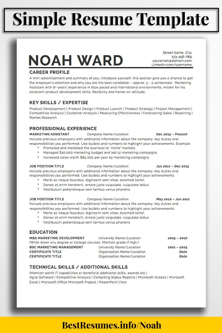 one resume template noah bestresumes info job simple summary personal assistant examples Resume One Page Summary Resume