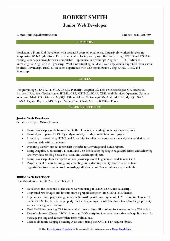 web developer resume sample awesome junior samples in marketing accountant soap services Resume Soap Web Services Developer Resume
