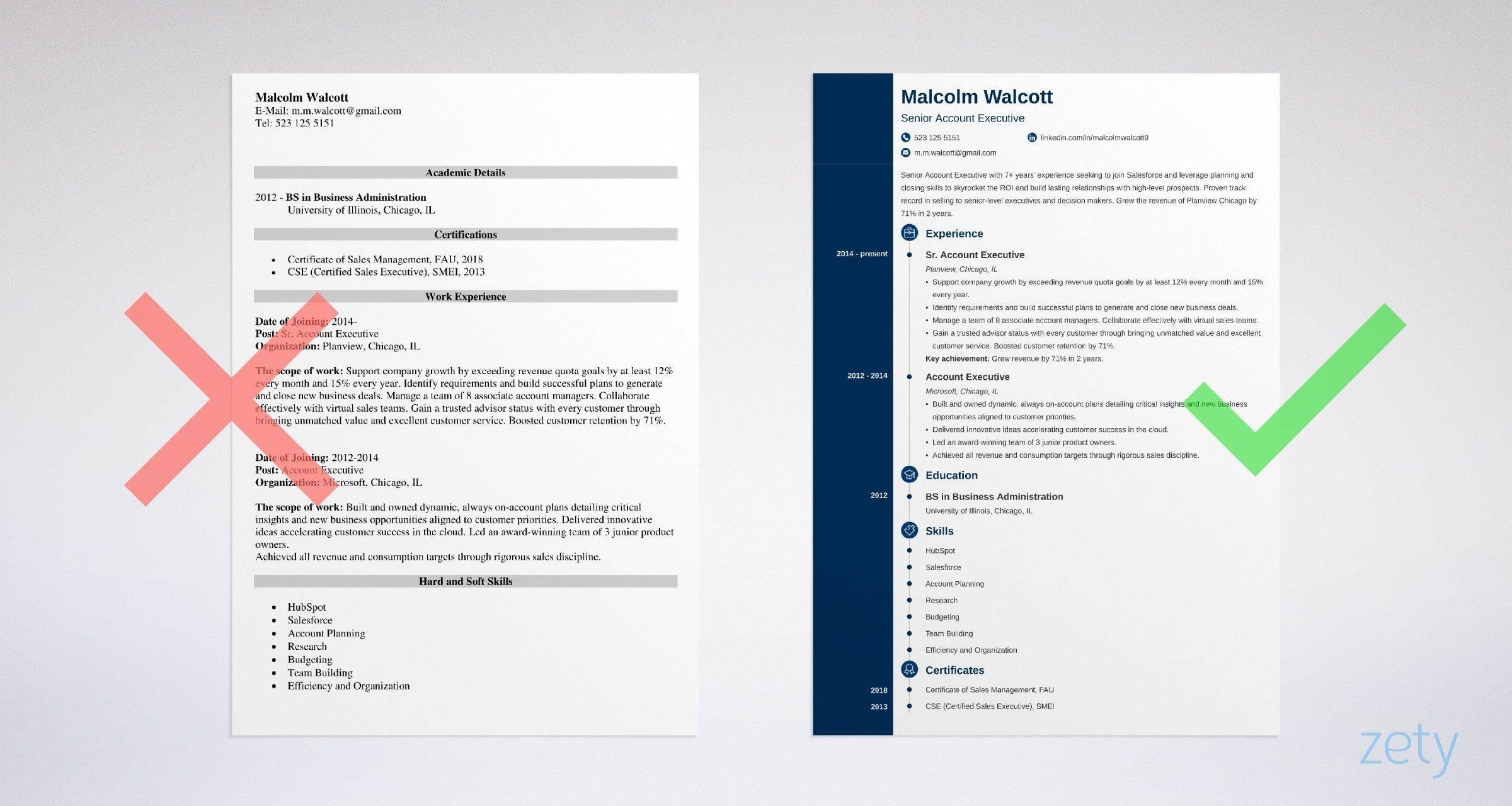 account executive resume sample best examples professional example objective for Resume Professional Account Executive Resume