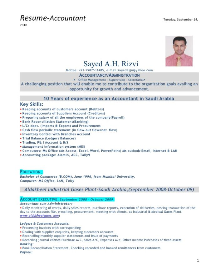 accountant with experience resume format for motion graphics career goals examples Resume Experience Resume Format For Accountant