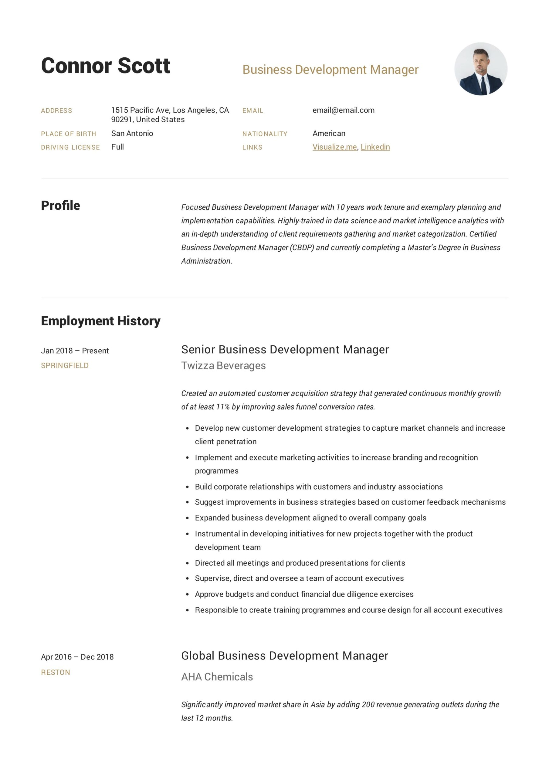 apply business development manager job description in resume personal projects monster Resume Business Manager Resume