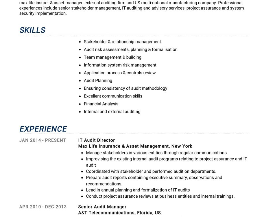 auditor resume example cv sample guide resumekraft quality control 913x750 brainstorming Resume Quality Control Auditor Resume
