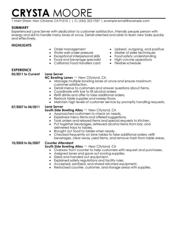 best server resume example livecareer duties and responsibilities for media entertainment Resume Server Duties And Responsibilities For Resume