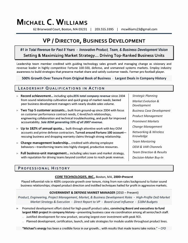 business development executive resume new vp sample professional samples template canva Resume Business Development Executive Resume Template