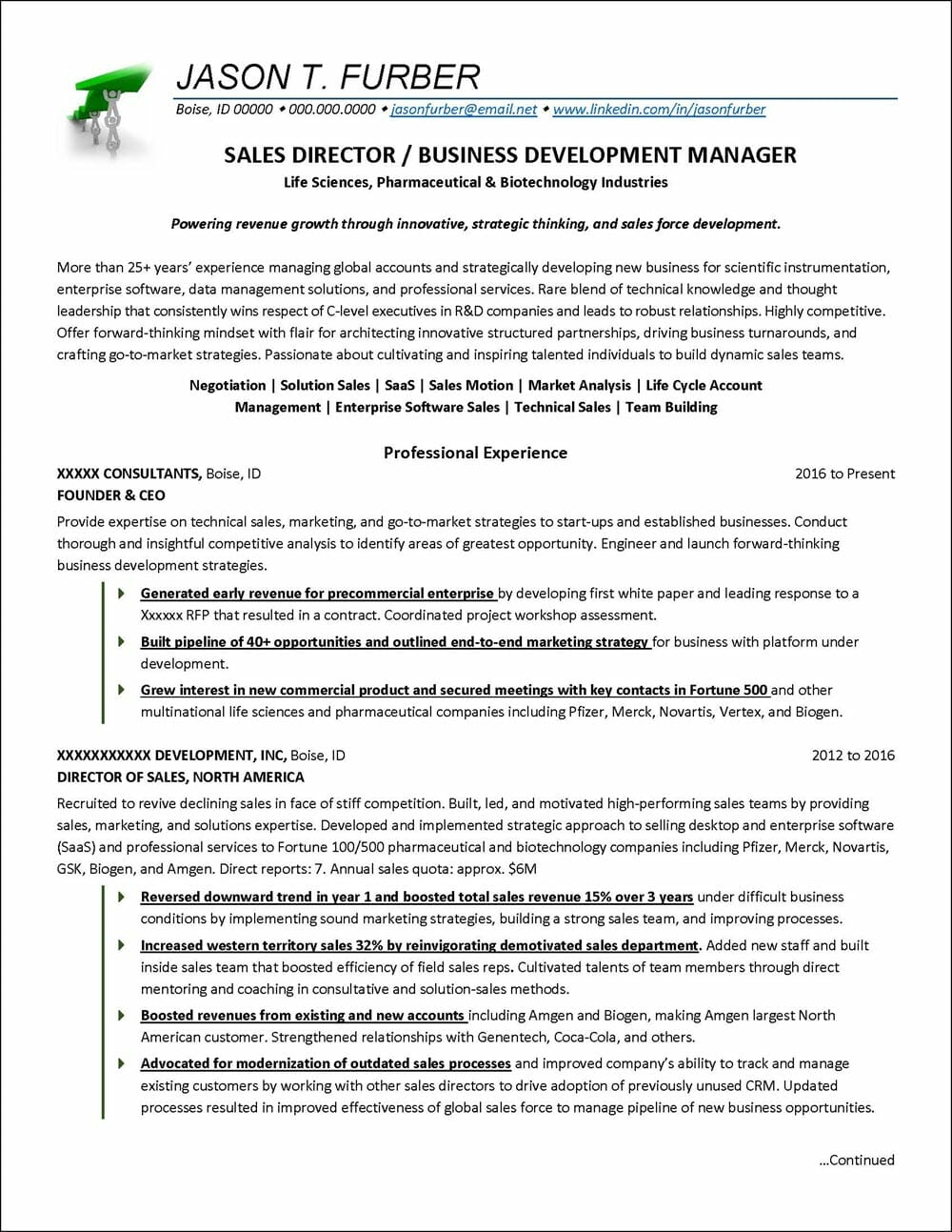 business development resume example distinctive career services director of manager Resume Director Of Development Resume