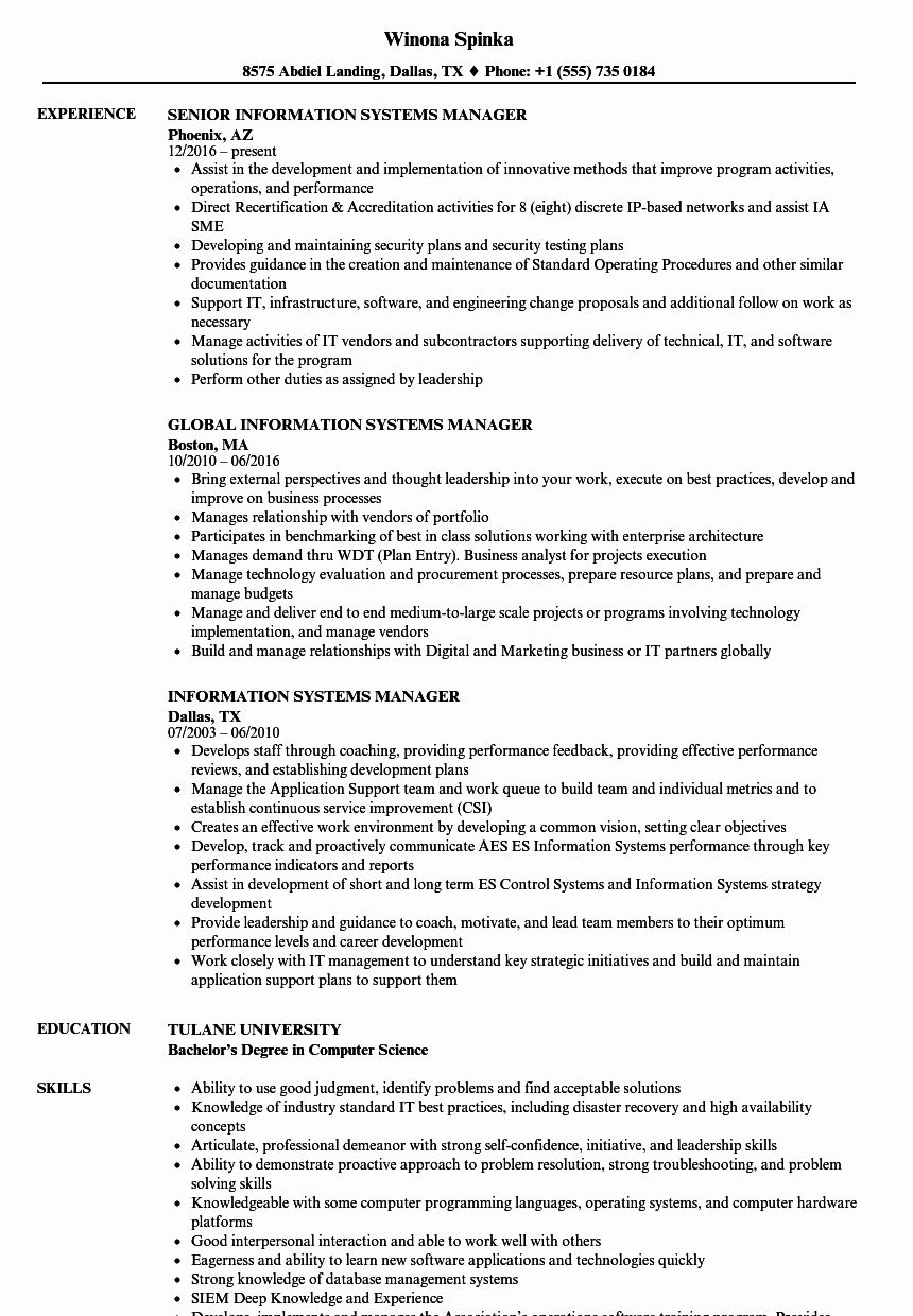 computer information systems resume unique manager samples in business analyst examples Resume Information Systems Resume