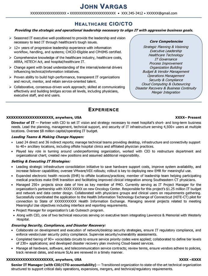 executive resume samples professional writer ny healthcare cio cto district manager Resume Healthcare Executive Resume