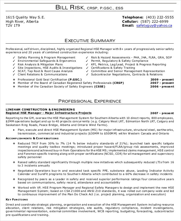 executive summary examples in word pdf google docs free premium templates of resume Resume Executive Summary Of Resume Example