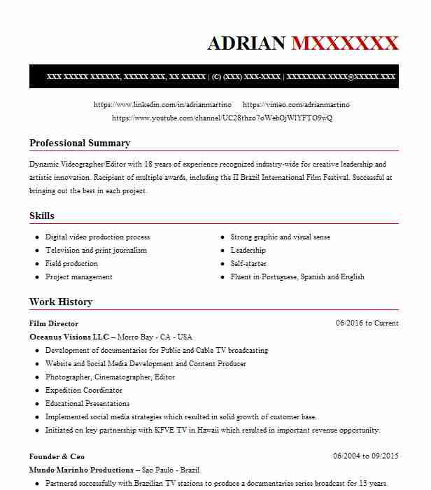 film director resume example resumes misc livecareer independent producer area manager Resume Independent Film Producer Resume