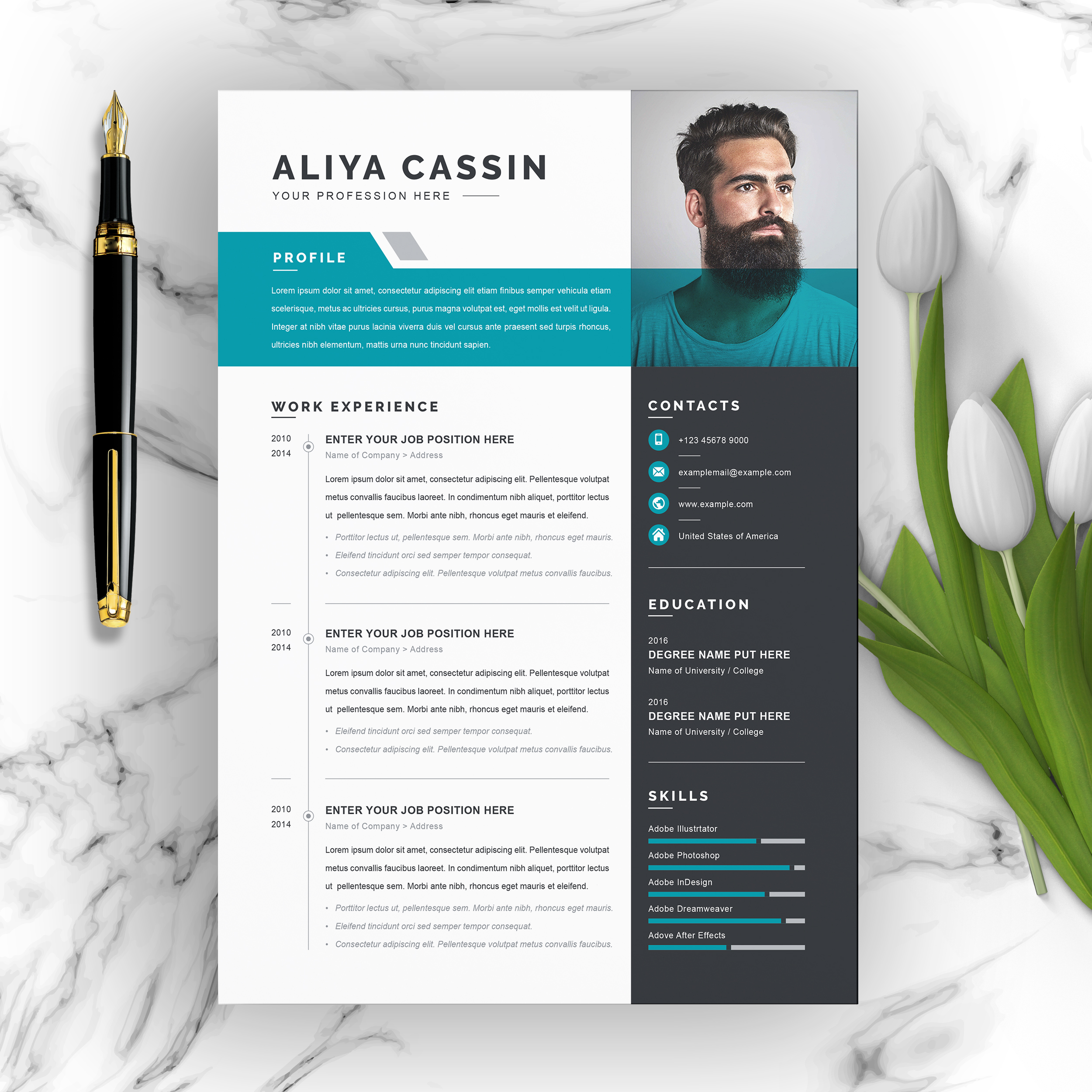 free resume templates with multiple file formats resumeinventor template modern clean Resume Resume Template Modern Free Download