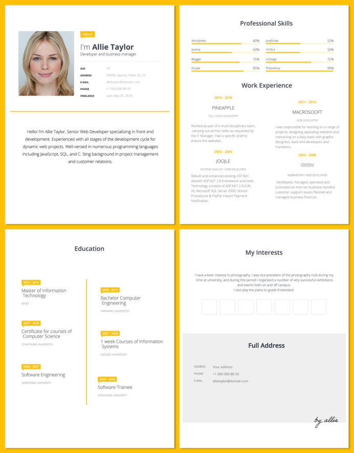 free word resume template for software developers good templates simple developer quick Resume Word 2003 Resume Templates Free