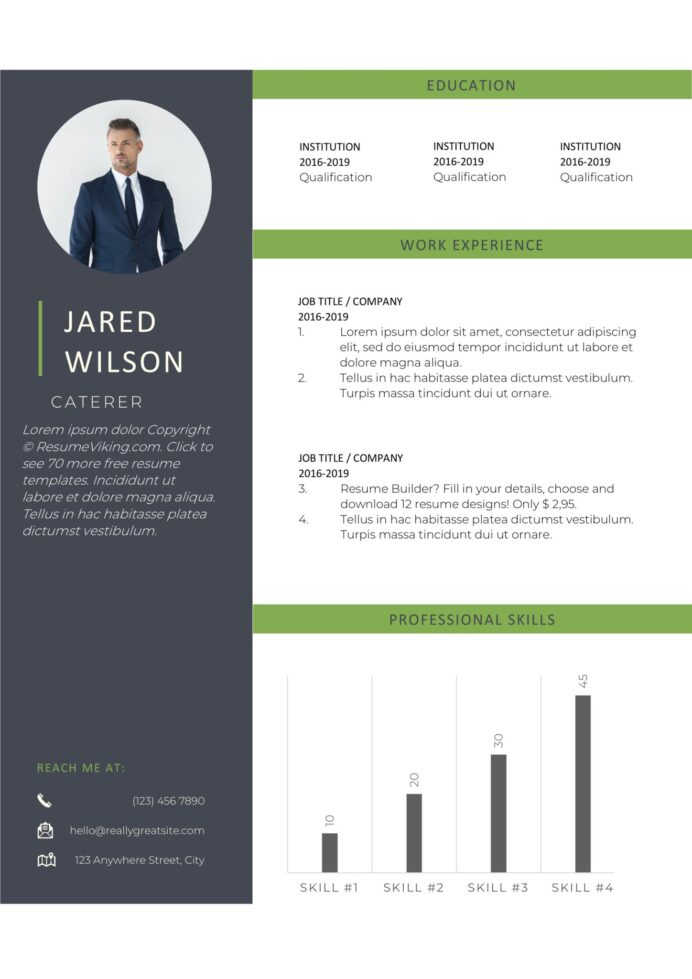 free word resume templates in ms for starter template resumeviking scaled commercial Resume Free Resume Templates For Word Starter 2020