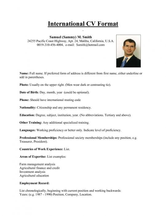 international resume format for overseas job this sum keeps simple and classy showcases Resume Sample Resume For Abroad
