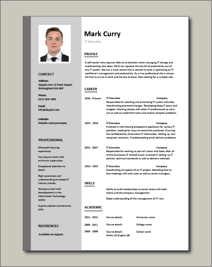 it executive resume example sample technology technical skills expertise college free Resume Technical Executive Resume