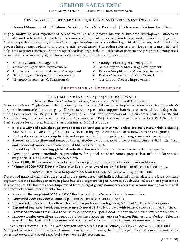 resume sample senior executive career resumes tips page1 the most impressive experienced Resume Senior Executive Resume Tips