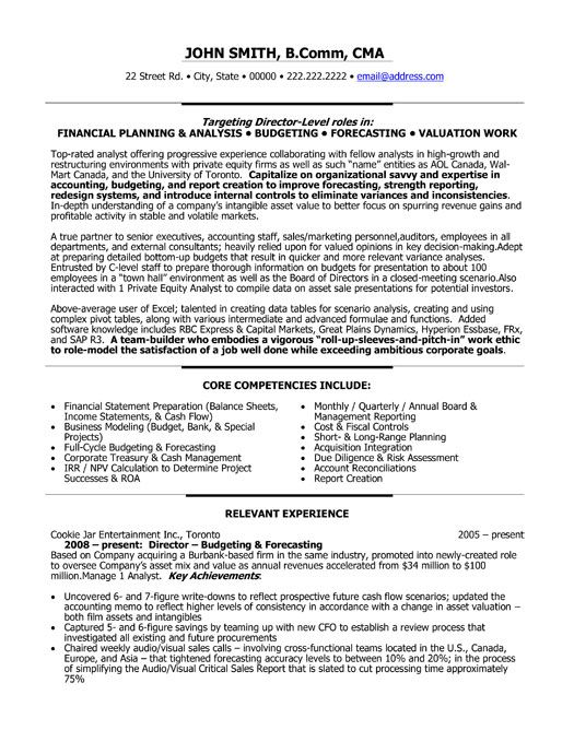 resume template for director of finance you can it and make your own executive project Resume Cash Management Resume Samples