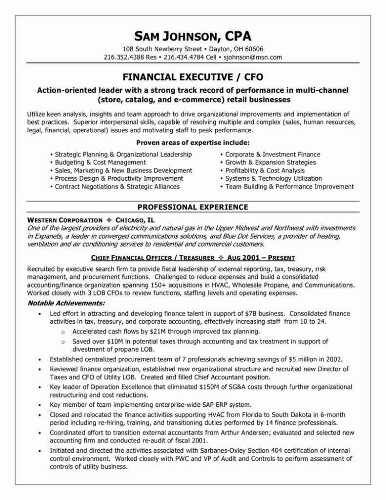 sample resume functional easy profit and loss statement cover letter for executive Resume P&l Responsibility Resume Examples