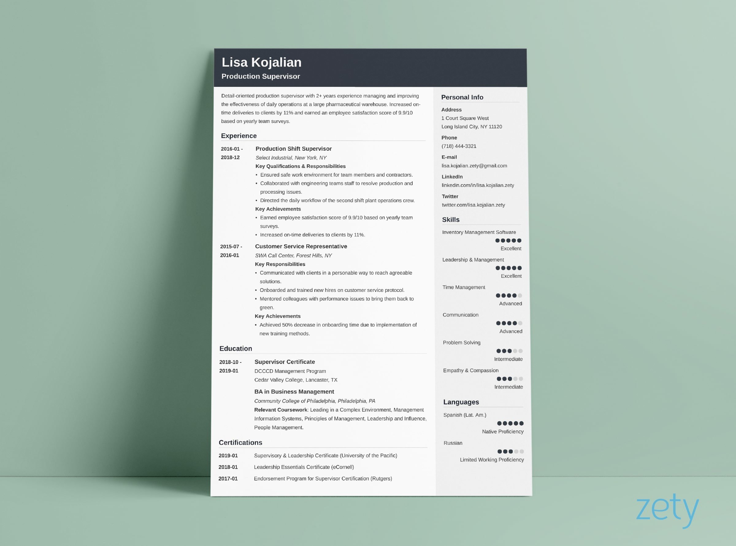 student resume cv templates to now free dynamic cubic software developer format usc good Resume Free Dynamic Resume Templates