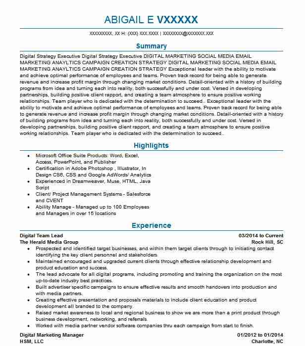 technology manager and digital transformation lead resume example capital one bank spring Resume Business Transformation Resume Sample