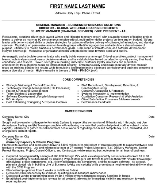 vice president it resume sample template examples executive vp business information Resume Vice President Resume Examples
