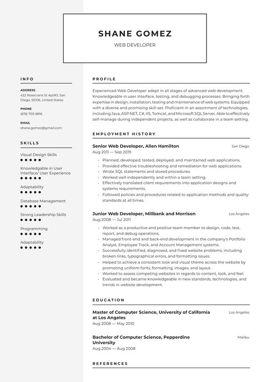 web developer resume examples writing tips free guide io generator objective for media Resume Developer Resume Generator