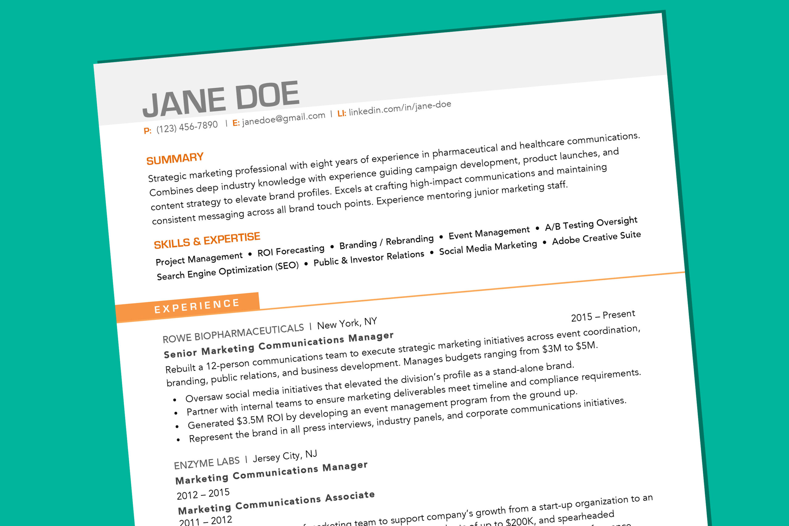 your resume should look like in money professional campaign manager simple sample bio Resume Professional Resume 2020