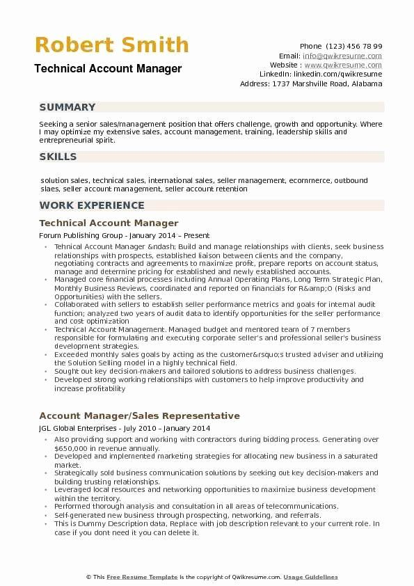 account manager resume example elegant samples marketing examples technical sample entry Resume Technical Account Manager Resume Sample