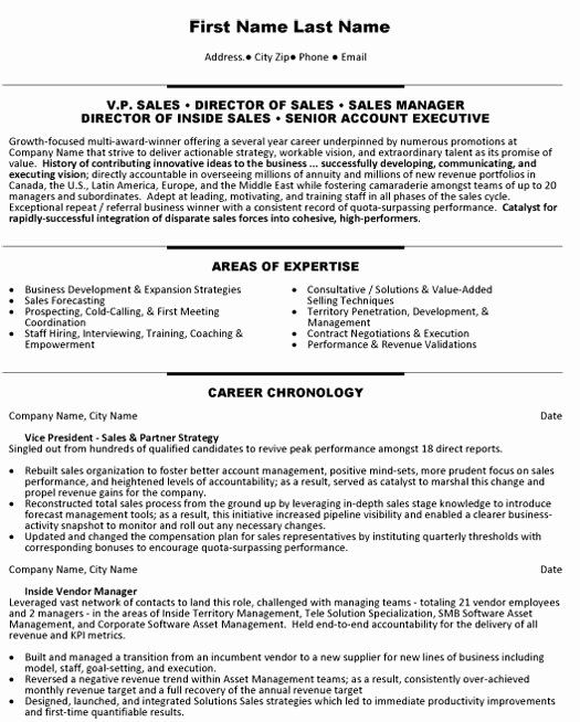 accounting executive resume samples best of account sample template examples manager hote Resume Sales Account Manager Resume