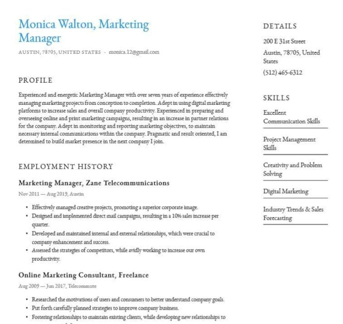 basic or simple resume templates word pdf for free company sample format project manager Resume Company Resume Sample Format