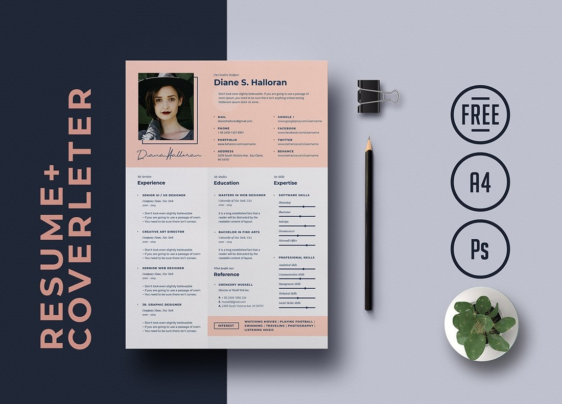 best cv resume templates design shack free template creative psych nurse career objective Resume Free Resume Template Download 2020
