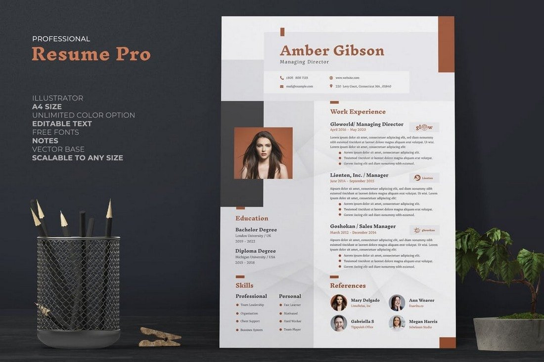 best cv resume templates design shack professional template watercolor commercial plumber Resume Best Resume Design 2020