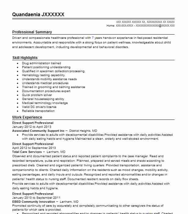 best direct support professional resume example livecareer examples admin executive bcg Resume Direct Support Professional Resume