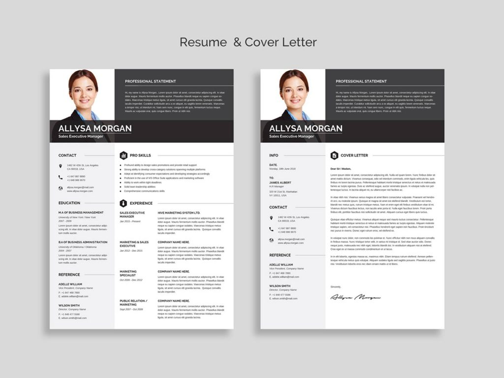 best free ms word resume templates webthemez template 1024x768 effective format for Resume Free Resume Template Download 2020