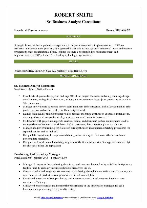 business analyst consultant resume samples qwikresume erp implementation format pdf wvu Resume Erp Implementation Consultant Resume Format