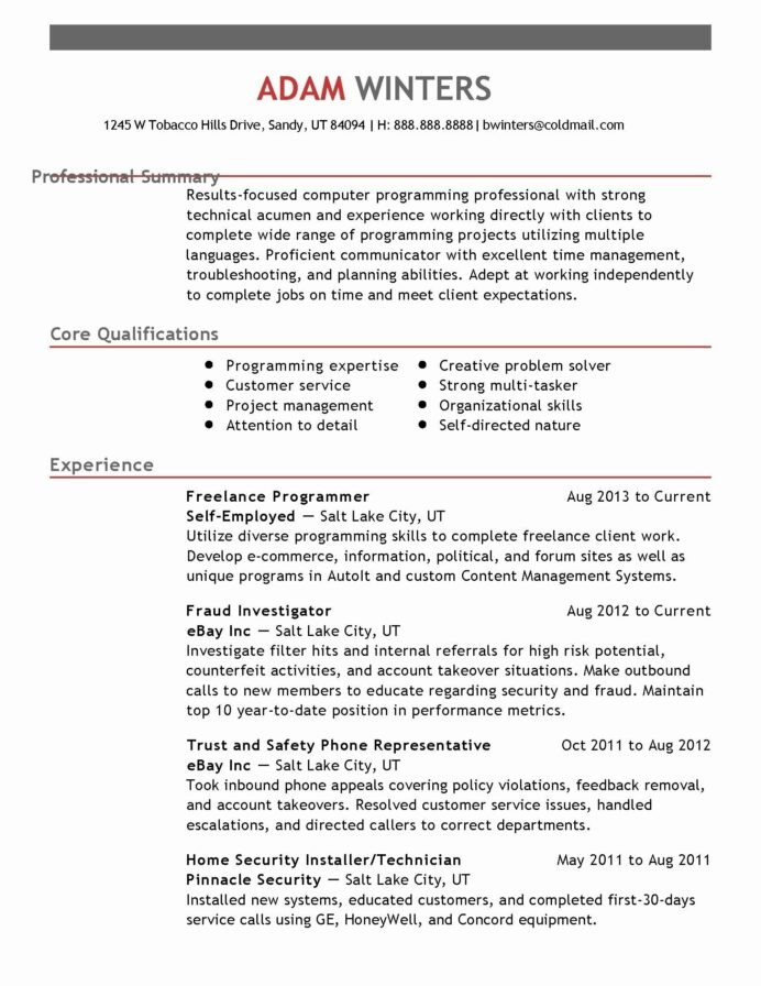 cool image of resume summary examples computer science student card professional block Resume Professional Summary Resume Student