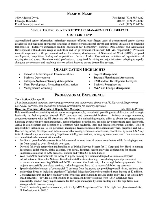 cto resume example information technology summary ex cio1a skills for security officer Resume Information Technology Summary Resume