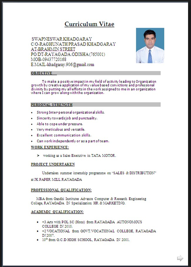 curriculum vita cv format pdf or word best resume examples sample file objective for Resume Resume Sample Word File