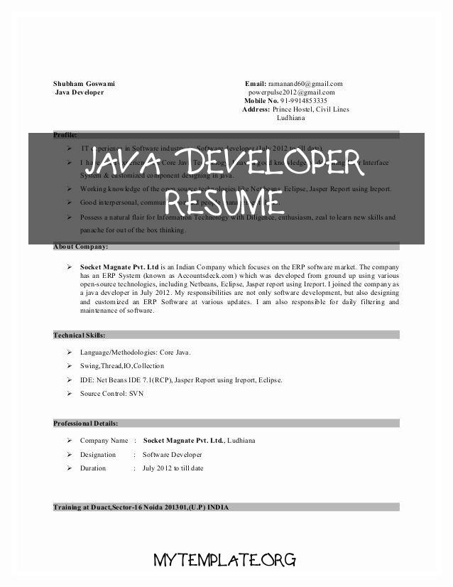 developer resume free templates years experience of junior luxury pin pmo business Resume Java Developer Resume 8 Years Experience