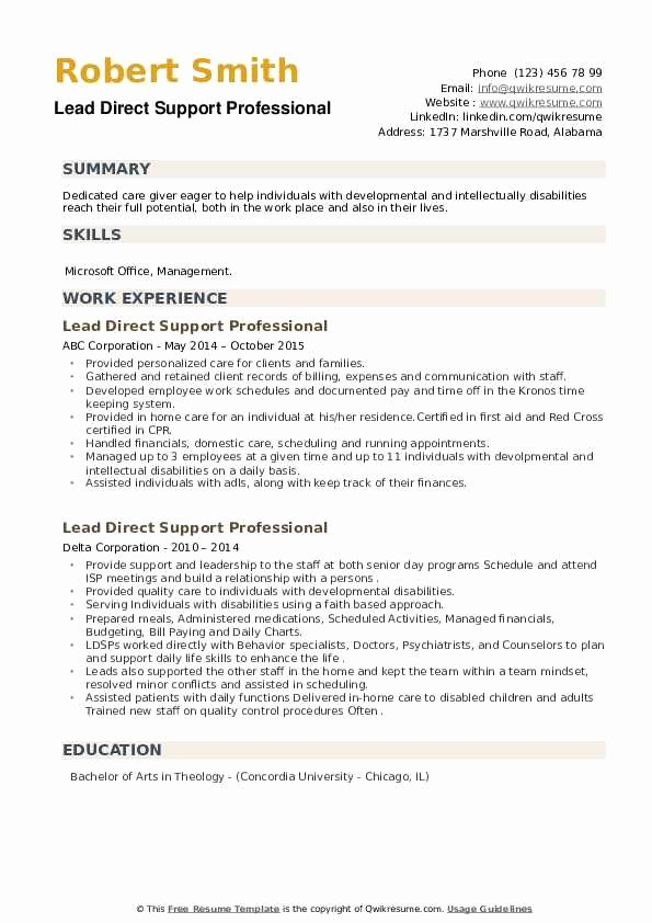 direct support professional resume sample unique free resumes by easyjob elfaro lead Resume Direct Support Professional Resume