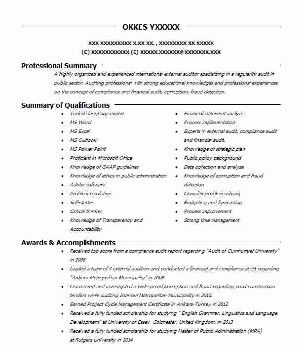 external auditor resume example resumes livecareer public accounting accounts receivable Resume Public Accounting Auditor Resume